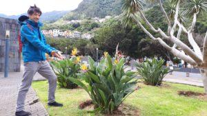 Hannes auf Madeira